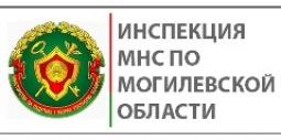 Инспекция МНС по Могилевской области